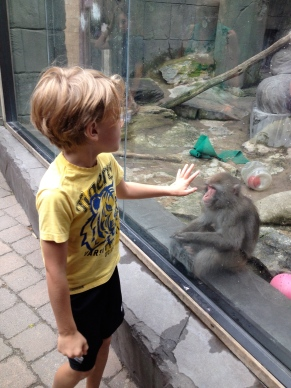 Aiden was very sad for this monkey, who was stuck living by himself at an aquarium.