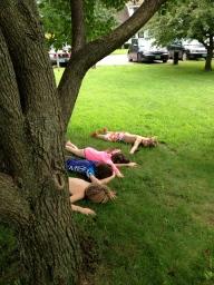 Terrible tree incident